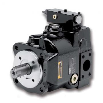 PAKER PV016 R1K1T1NMMC Piston Pump