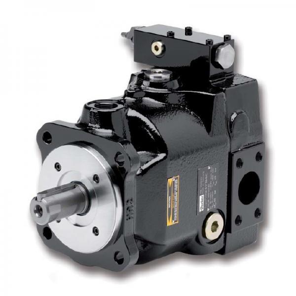 PAKER F12-090-MS-SV-T-000 Piston Pump #2 image