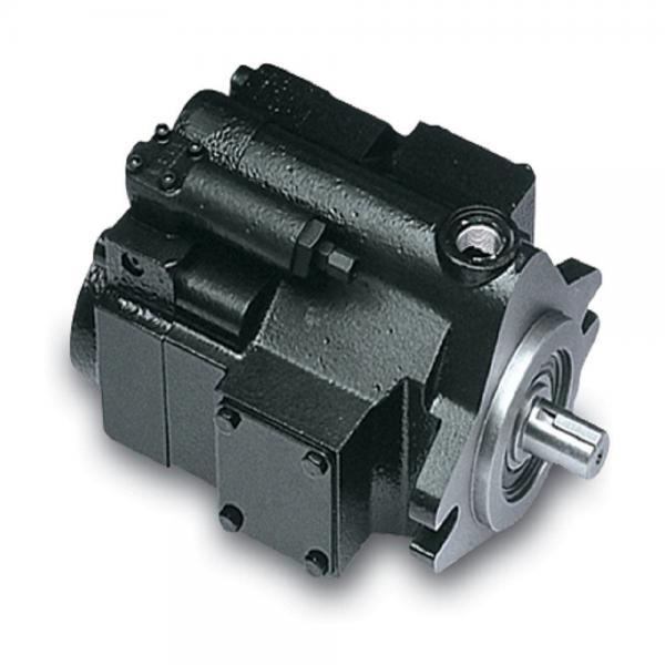 PAKER YB1-25/25 Piston Pump #1 image